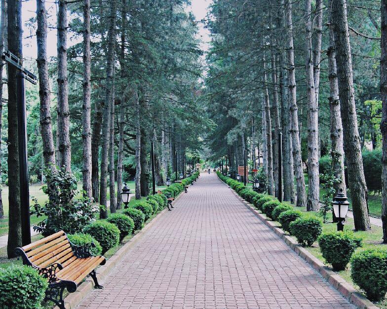 Güral Sapanca Wellness Park