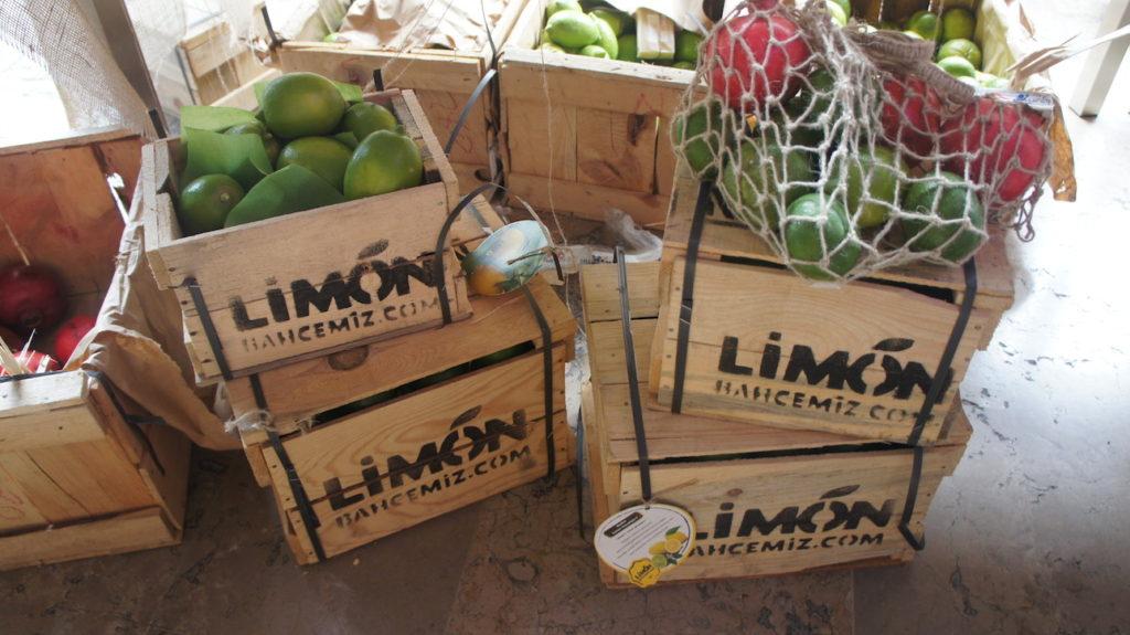 Limon Bahçemiz